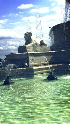 fountain water turtles lion pretty