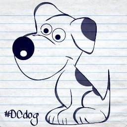 dcdog