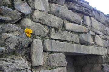 wall muro ruins